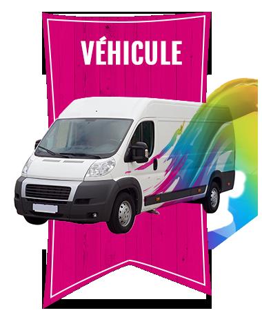 Categorie-elements-vehicule-color